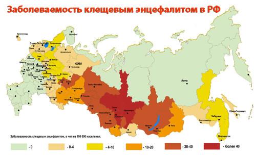 На фото показано регионы с заболеваемостью клещевым энцефалитом в РФ