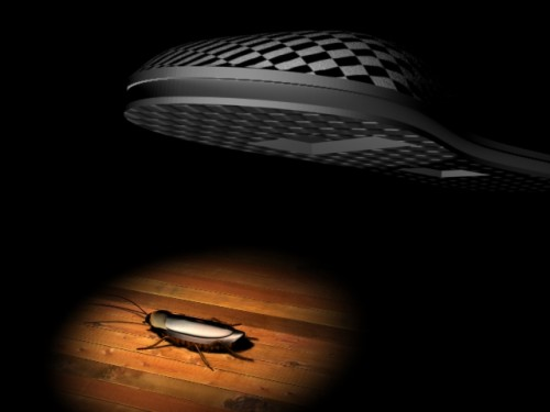 Механическое воздействие на тараканов