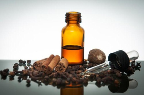 Насекомых можно изгнать запахами эфирных масел
