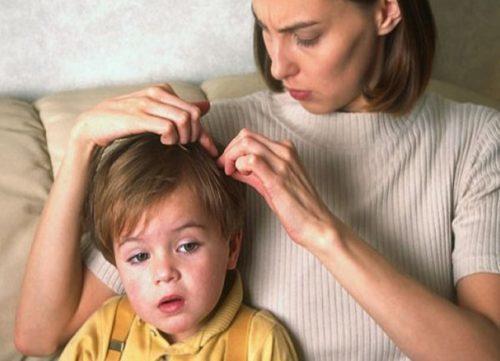 Дети чаще взрослых могут заразиться вшами