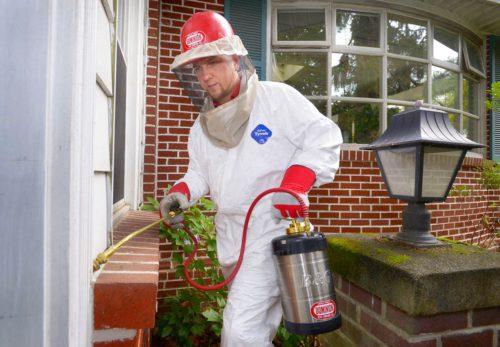 Перед обработкой следует надеть защитную одежду