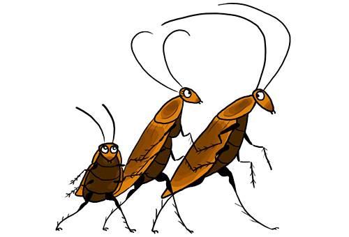 боязнь тараканов лечение