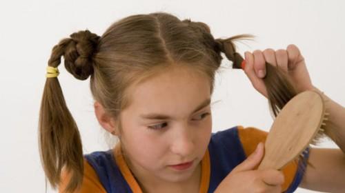головная вошь на длинных волосах