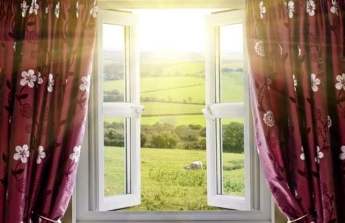 моль через окно