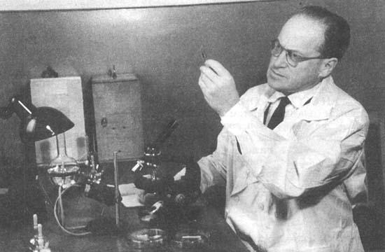 На фото профессор Л. А. Зильбер в вирусологической лаборатории