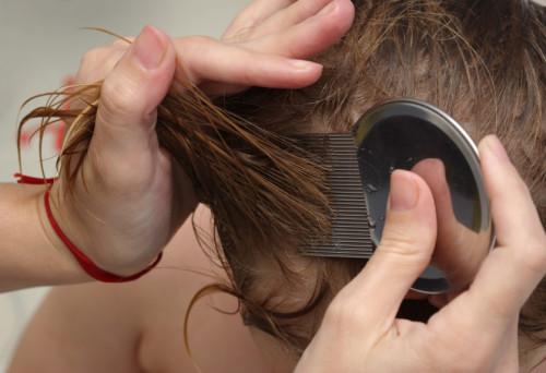 После покраски волосы нужно вычесать специальным гребнем