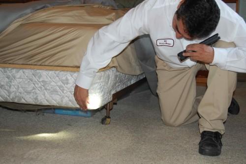 С помощью фонарика осмотреть мебель