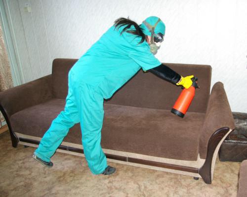 Квартиру нужно подготовить перед обработкой