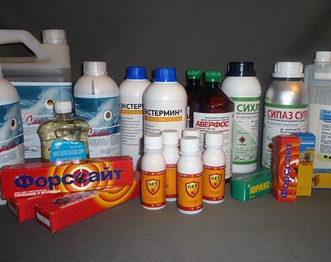 Химические средства против клопов