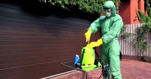 Инсектицид следует развести в воде
