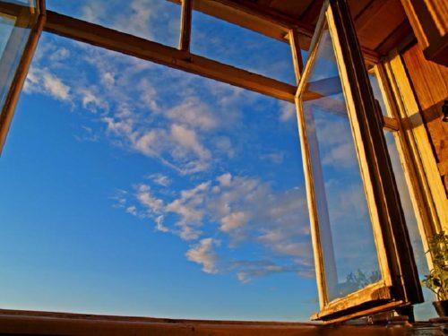 В дом насекомые проникают через открытое окно